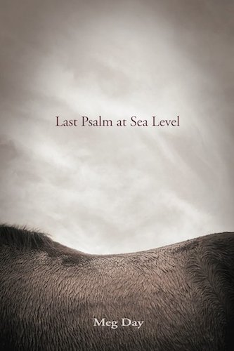 Last Psalm at Sea Level book cover